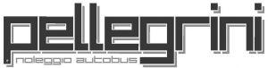 Logo_Pellegrini